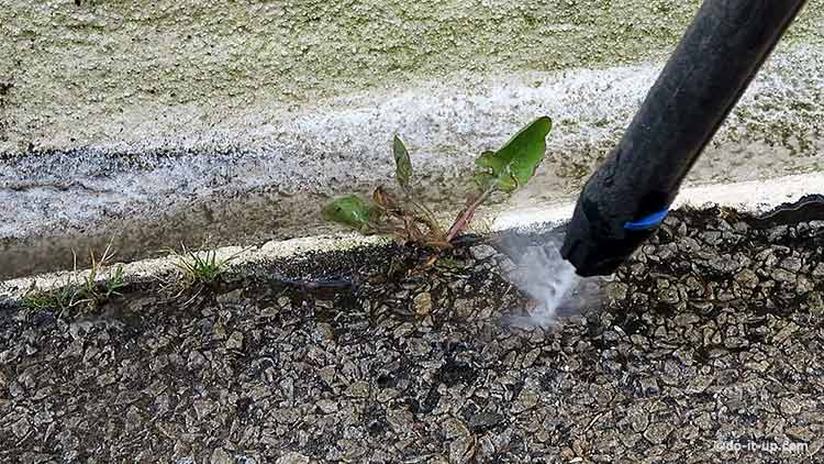 How to Repair a Driveway - Power Washing Weeds